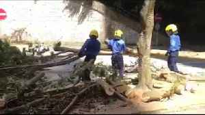 Workers remove felled trees from road following Typhoon Mangkhut in Hong Kong [Video]