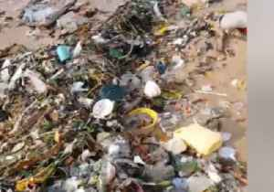Cleanup Underway After Trash Washes Up on Hong Kong Beach Following Typhoon [Video]