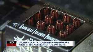 Wayne Co. Commissioner proposes 'Bullet Bill' to limit sale of bullets [Video]