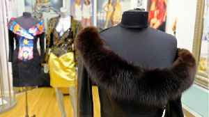 Los Angeles Bans Manufacturing & Selling Fur [Video]