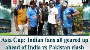 Asia Cup: Indian fans all geared up ahead of India vs Pakistan clash [Video]