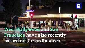 Los Angeles City Council Moves to Ban Sale of Fur [Video]