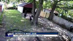 Ring of young thieves leaving many people in Detroit's Warrendale neighborhood on edge [Video]
