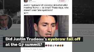 Did Justin Trudeau's Eyebrow Fall Off at the G7 Summit? [Video]