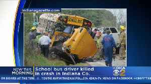 School Bus Driver Killed In Indiana County Crash [Video]