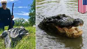 Texas county mayor shoots gator, seeks revenge for mini-horse [Video]
