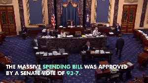 $854 Billion Spending Bill Approved by the US Senate [Video]
