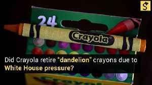 Crayola to Retire 'Dandelion' Colored Crayon Due to White House Pressure? [Video]