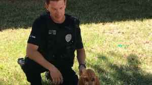 Meet Bandit, JPD's newest bloodhound named in Burt Reynold's honor [Video]