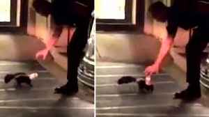 Cop Carefully Tries to Help Skunk With Cup on Its Head Without Getting Sprayed [Video]