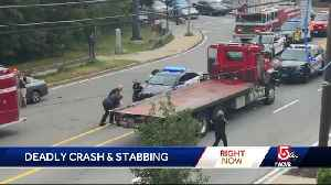 Man stabs driver after his mom fatally hit crossing road [Video]
