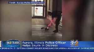Officer Helps Skunk In Distress [Video]