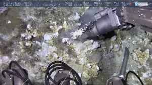 Deep sea robots reveal mineral riches in the abyss [Video]