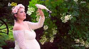 Expectant Mother Poses for Maternity Photos with Thousands of Bees...Oh, and a Python! [Video]