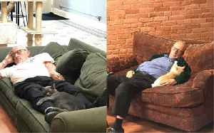 75-year-old man who naps with cats while volunteering goes viral [Video]