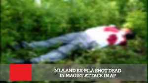MLA And Ex-MLA Shot Dead In Maoist Attack In AP [Video]