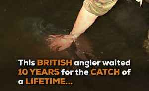 WOS Britain's Record Fish [Video]