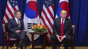 Trump had 'terrific' talks with South Korea's Moon [Video]