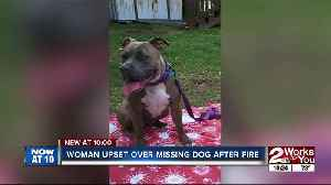 Tulsa family looking for dog housed by Red Cross volunteer [Video]