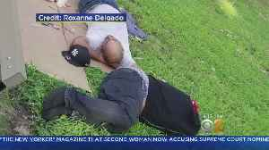 Residents Say Newly Renovated Bronx Park Now Riddled With Drug Use, Homelessness [Video]