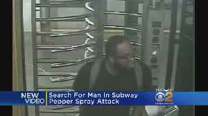 Search On For Subway Pepper Spray Suspect [Video]
