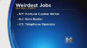 List Of Weirdest Jobs Released [Video]