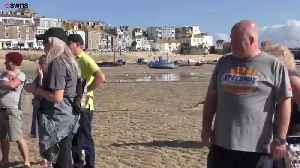 Mackerel Caught By Tide, Stranded on British Beach [Video]