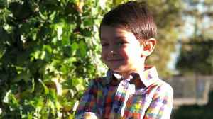 6-Year-Old Boy Abducted by Father in California, Amber Alert Issued [Video]