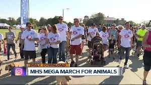 Mega March for Animals coming up [Video]