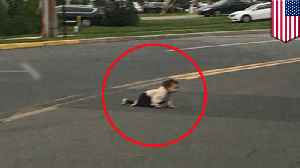 Viral photo shows baby crawling across Lakewood road [Video]