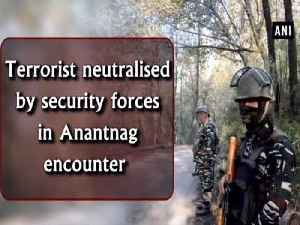 Terrorist neutralised by security forces in Anantnag encounter [Video]
