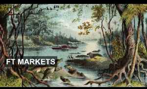 Frontier markets - still time to buy? [Video]
