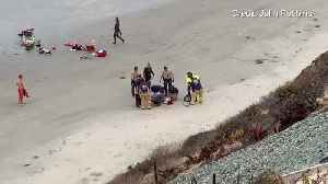 Child attacked by a shark in Encinitas [Video]