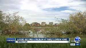 A pond becomes a problem at family's dream home [Video]