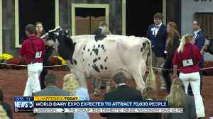 World Dairy Expo providing hope for struggling farmers this week [Video]
