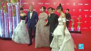 Chinese star Fan Bingbing ressurfaces after three months of silence [Video]