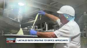 Lactalis is hiring [Video]
