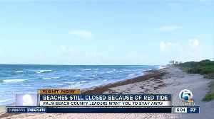 Many Palm Beach County beaches will remain closed Wednesday for red tide [Video]