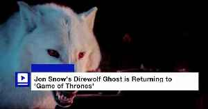 Jon Snow's Direwolf Ghost is Returning to 'Game of Thrones' [Video]