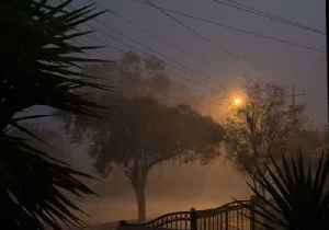 Torrential Rain Follows Dust Storm in Broken Hill, New South Wales [Video]