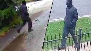 Chicago Cops on the Lookout for Suspected Serial Killer Who Walks Like a Duck [Video]