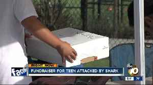 Fundraiser for teen attacked by shark in Encinitas [Video]