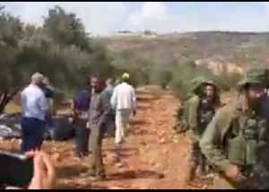 Olive Harvesters Confronted by IDF Soldiers Near al-Sawiya [Video]