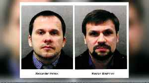 Second suspect in Skripal poisoning identified: Research group [Video]