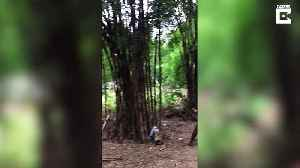 Villagers in Myanmar showcase incredible acrobatic display playing their National sport of Chinlone [Video]