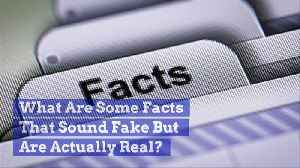 What Are Some Facts That Sound Fake But Are Actually Real? [Video]