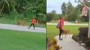 11-Year-Old Girl Charged With Snatching Dog in Florida Neighborhood [Video]