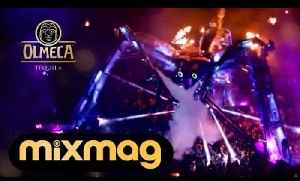 Arcadia Teaser: 'The Story of the Spider' - Switch On The Night by Olmeca Tequila & Mixmag [Video]