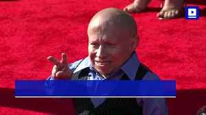Verne Troyer's Cause of Death Revealed to Be a Suicide [Video]
