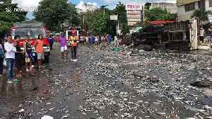 Truck spills thousands of fish sparking frantic scenes as locals try to collect them [Video]